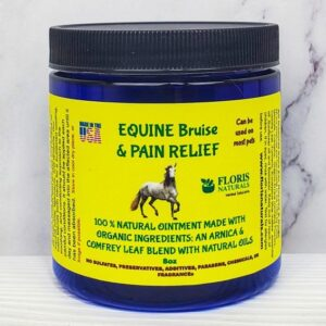 Natural Equine Pain Relief Ointment for Horses - Floris Naturals