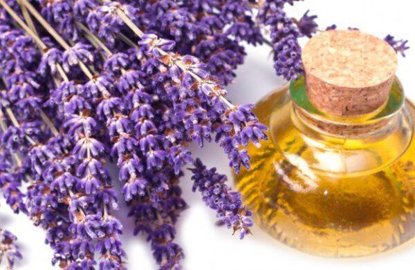 lavender oil 2 natural remedies