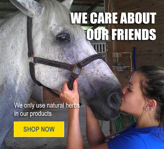 Organic Natural Herbal Equine Products for Horses and Farm Animals - Floris Naturals